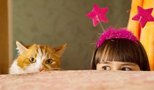 Cats And Kids: Keeping Both Safe