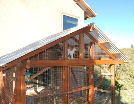 The Catio Safely Giving Your Cat The Outdoors CatTime