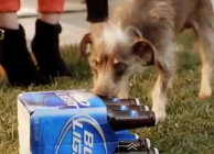 Super Bowl 2012 ads: the winner…and losers