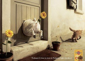 Alternate best dog and cat print ads
