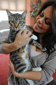 Cat rescued by Verizon workers adopted