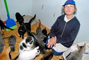 Cat hoarder faces housing deadline
