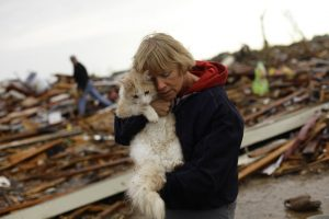 Pets And Disaster Preparedness