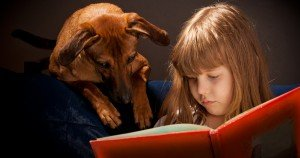 How to earn school credit and help animals