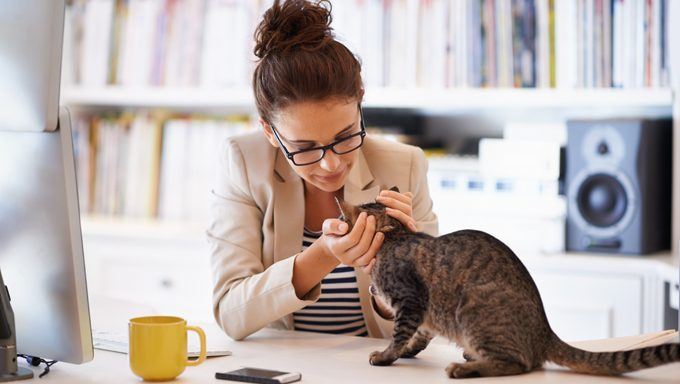 woman petting cat at desk