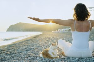 Summer Safety For Your Cat