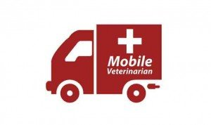 Top 5 Benefits To Choosing A Mobile Veterinarian