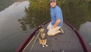 Fishermen Land The Cutest Catch Of The Day: Two Kittens