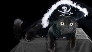 20 Cat Halloween Costume Ideas [PICTURES]