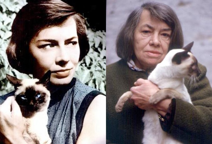 Patricia Highsmith (Photo Credit: wwnorton.tumblr.com)