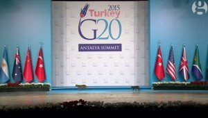 Stray Cats Upstage World Leaders At The G20 Summit