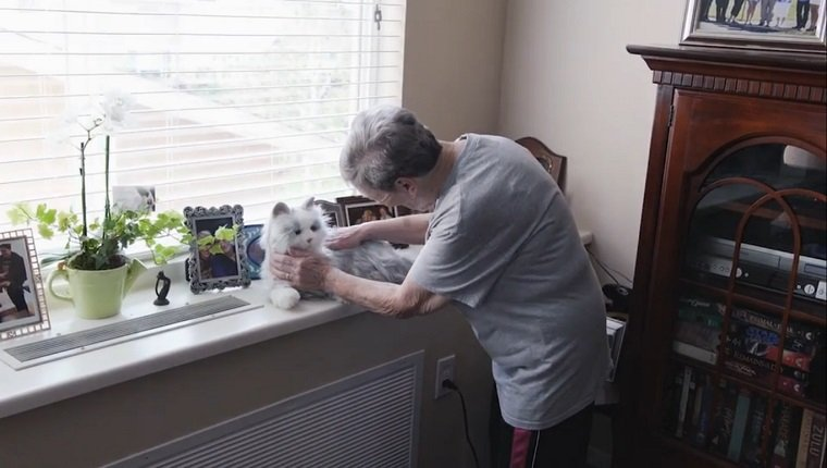 An elderly woman pets a white toy can that sits near a large window.