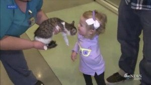 Toddler Amputee Adopts And Bonds With 3-Legged Kitten