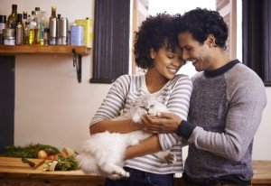 10 Ways To Pamper Your Cats For National Pet Month