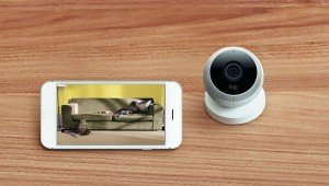 Logi Circle Security Camera Giveaway In Honor Of National Pet Month