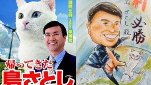 Japanese Politician's Campaign Ads Randomly Feature A Cat–Because Why Not?