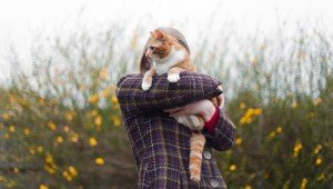 10 Tips To Make Sure You Never Lose Your Cat