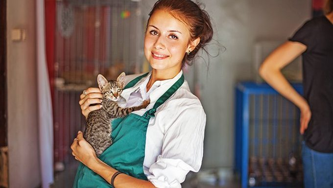 woman holding cat in animal shelter