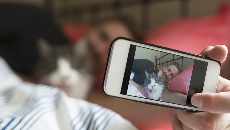 Man with cat bed taking selfie camera phone
