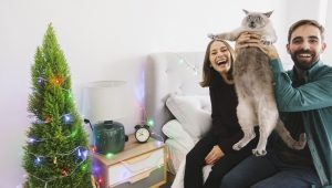 10 Ways To Ruin Your Cat's Christmas