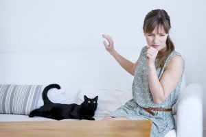 Can You Die From A Cat Allergy?