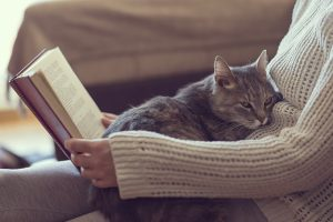 Cat Years: How Long Does A Cat Live?