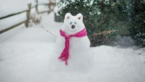#Snowcat: Cat-Snowman Inspiration For Feline Lovers [PICTURES]