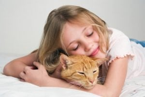 Here's How To Have A Successful Hug Your Cat Day