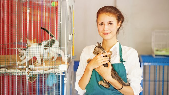 woman with cat in shelter