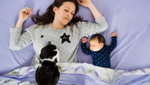 3 Ways To Celebrate Mother's Day With Your Cat