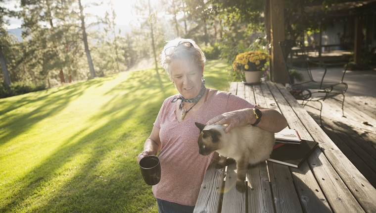 Senior woman petting cat and drinking coffee on sunny, idyllic patio