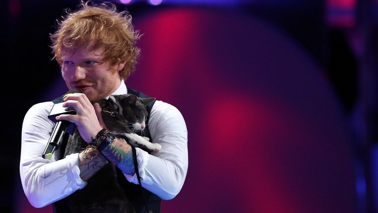 TORONTO, ON- JUNE 21 Ed Sheeran holds a cat as he co-hosts the 2015 Much Music Video Awards at MuchMusic on Queen Street West in Toronto. June 21, 2015
