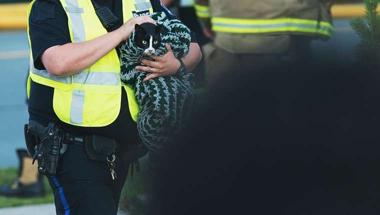 A police officer returns a frighted cat to it's owners amidst the chaos of a house fire.