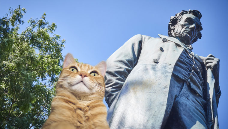abraham lincoln statue and cat