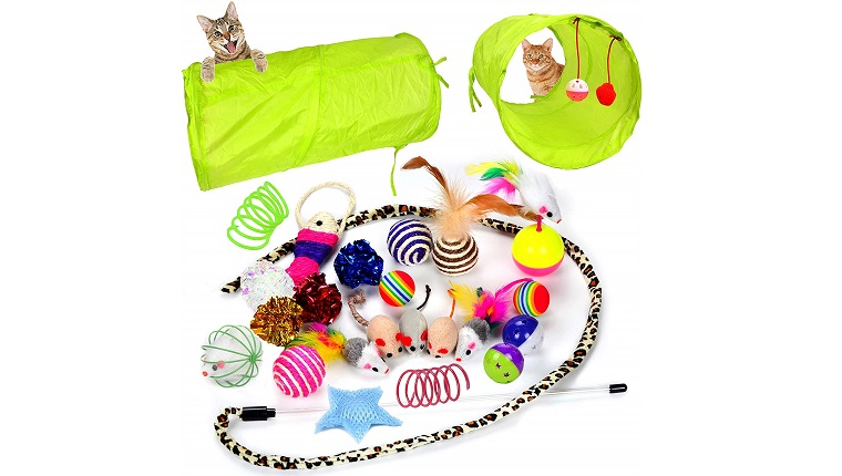 cat tunnel and toys