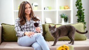 5 Cat-Themed Gifts To Celebrate Drink Wine Day With Your Kitty